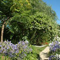 esterno_il_giardino2